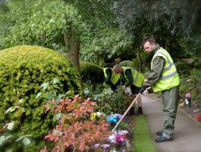 Cemetery grounds maintenance