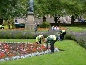 glendale staff members maintaining a flower patch