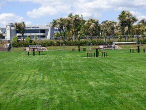 Landscaping reinstatement in Torquay 2