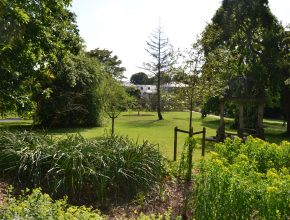 Landscaping reinstatement in Torquay