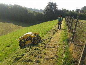 Remote control mowing grounds maintenance