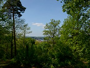 view of camberley park