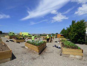 Sensory Garden Project at School